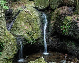 神秘的な渓谷で深呼吸!マイナスイオンに癒される佐賀県・有田のドライブスポット