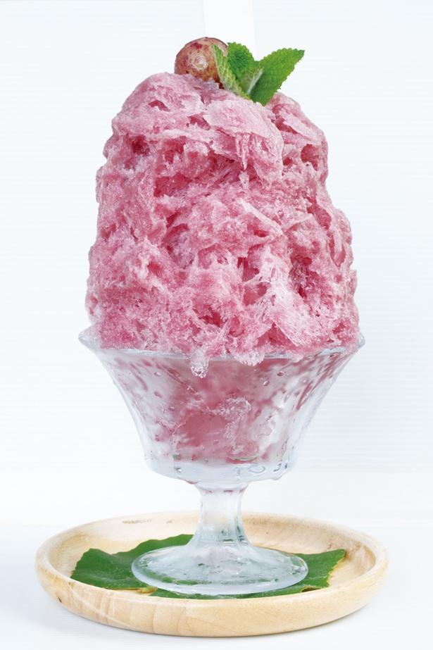 【写真を見る】豊後有機農園aya cafe / 絶品!宇佐市「ぶどう農園プーの丘」のブドウを皮まで使ったぶどうかき氷(800円)