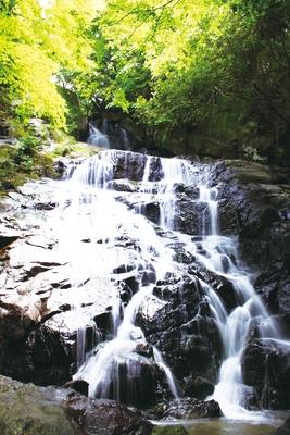 千寿院の滝 / 駐車場から滝まで足場が悪いので注意