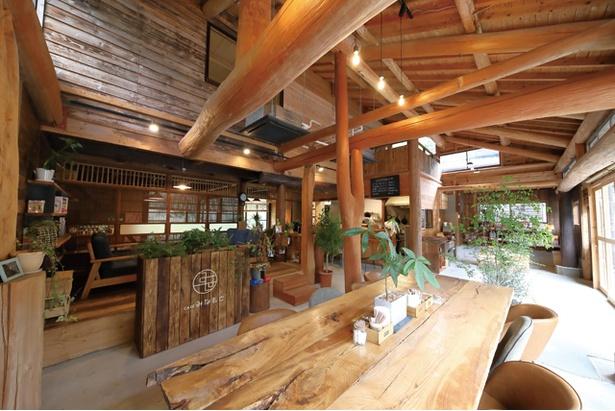 CAFÉみなもと / 自然の中にいるかのような木があふれる店内。ソファ席や座敷席もあり