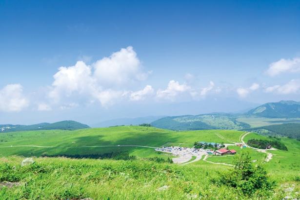 「ビーナスライン」(長野県茅野市~上田市)では、 見渡す限り草原が広がっている!