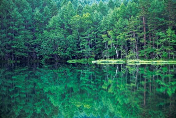 水面に反射する青々とした景色は神秘的 /「御射鹿池」(長野県茅野市)