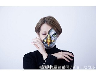 アーティスト チョーヒカルの個展「超動物展 in 静岡」が8月末に開催