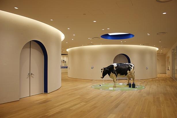 ミュージアム2階の展示エリア