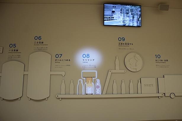 見学ナビゲーターの説明に合わせて壁に投影されたプロジェクションマッピングが移動する