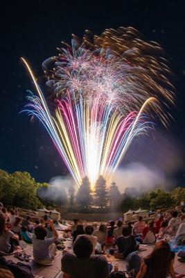 ナイター営業では、音楽に合わせて花火が打ち上がる/「安城産業文化公園 デンパーク」