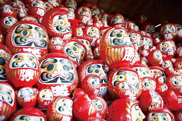 【写真を見る】勝運のご利益を授かれる寺として、勝ちダルマがズラリと並ぶ「勝尾寺」の奉納棚は圧巻/勝尾寺