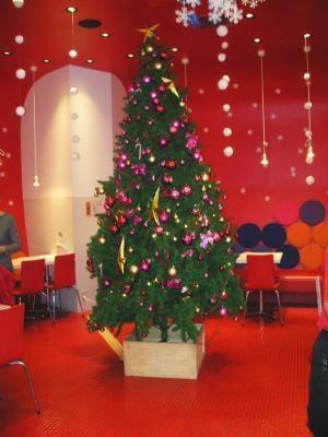 クリスマスの期間、店内には大きなツリーが
