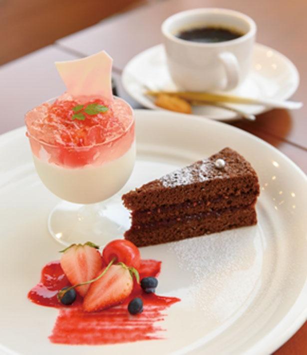 季節のグラスデザート(700円)は、サクランボゼリーのブランマンジェやラズベリーチョコケーキがセット/並木カフェ メタセコイア