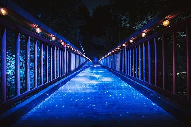 【写真を見る】幻想的な光が広がる空間も