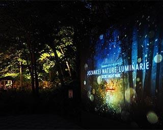 自然と共創するイルミ 北海道札幌市で「SECRET NIGHT PARK」開催中