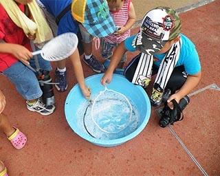 大人も子供も楽しめる科学実験!チュウブ鳥取砂丘こどもの国でイベント開催
