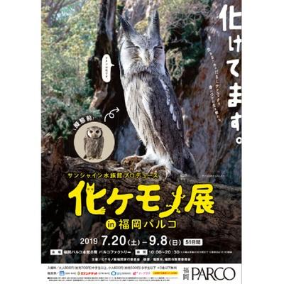 化ケモノ展 in 福岡PARCO  / 「擬態」に焦点を当てさまざまな生き物を紹介