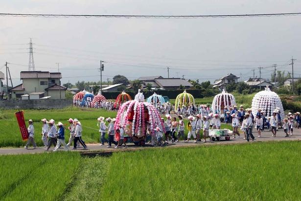 【写真を見る】華やかな花傘鉾が30~40kmもの巡行を行う