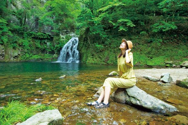 【写真を見る】岩を伝って千手のように流れ落ちる赤目五瀑の一つの千手滝。落差約15mの滝に周囲の岩、樹木、そして滝壺が調和して美しい景観を成す/赤目四十八滝