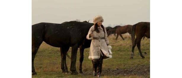 【写真】馬と人の強い結びつきを見出す山口智子らなど、さまざまなシーンカットはこちら!