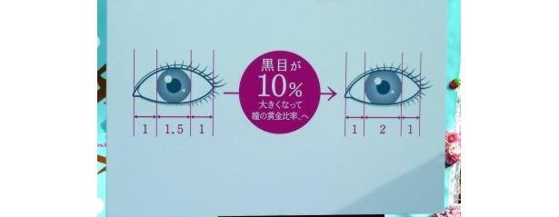 瞳の黄金比率1:2:1