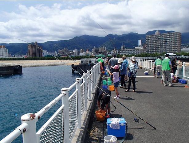 別府ポートフェスタ2019 / 「釣り文化振興促進モデル港」に選ばれたことを記念!