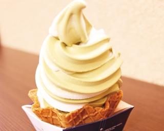 道の駅へ行ったら要チェック!岐阜の特産品を使ったソフトクリーム5選