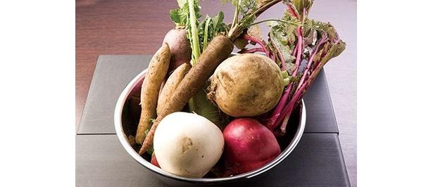 高知の弘岡カブなど、伝統野菜などの国産野菜にもこだわる