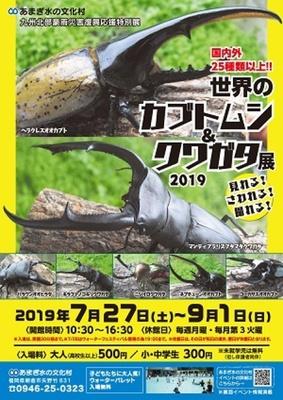 【写真を見る】世界のカブトムシ&クワガタ展2019 / 国内外25種類以上のカブトムシ・クワガタ
