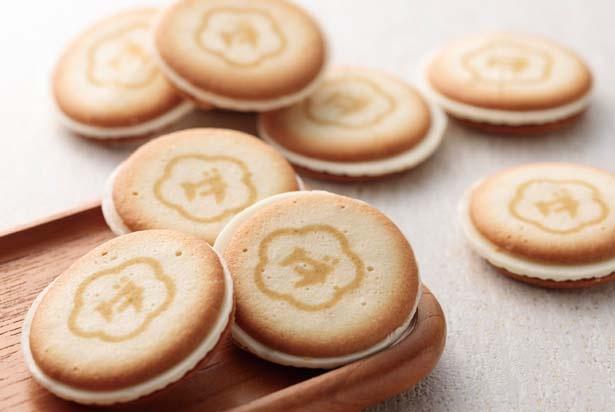 チーズクッキー8枚入り(1080円)/ウメダチーズラボ