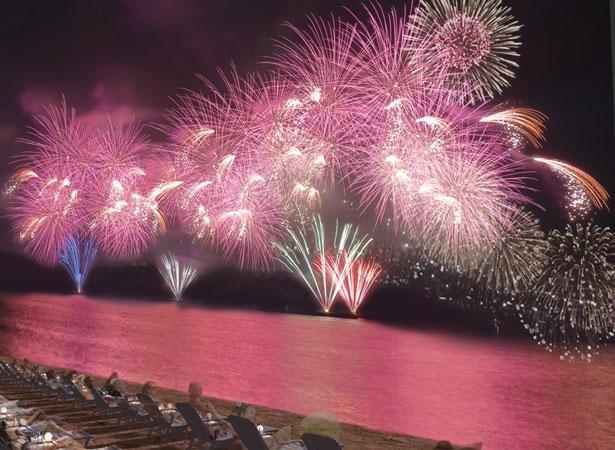 音楽と花火が融合することで作り上げられる、幻想的な夢空間が見どころ/泉州 光と音の夢花火
