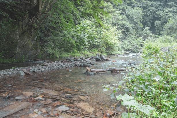 渓谷に囲まれた「KEIKOKU GLAMPING TENT」でのグランピングは、日常の喧騒から離れたい時にぴったり