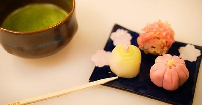 日本庭園で楽しむ特別なお茶会体験