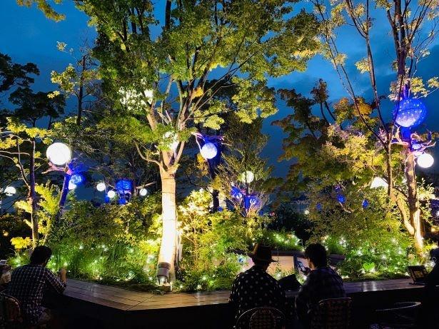 ブルーとホワイトのイルミネーション「OMOHARA Summer illumination」も開催