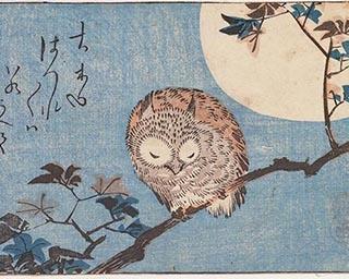 歌川広重《月に木莵》江戸時代 天保中期頃(後期展示)