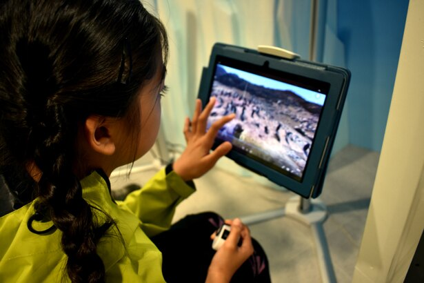 4.いよいよ、ペンギンの個体数を観測する体験へ/キッザニア甲子園