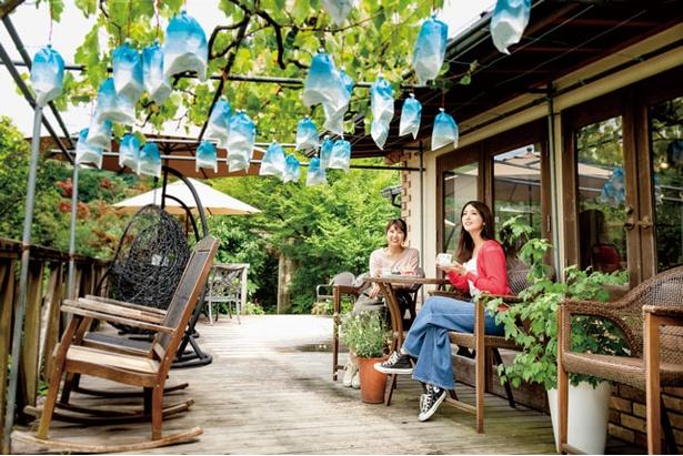 約30種のスイーツがそろうカフェ「夢語寄家(むごよか)」 / うきは果樹の村 やまんどん