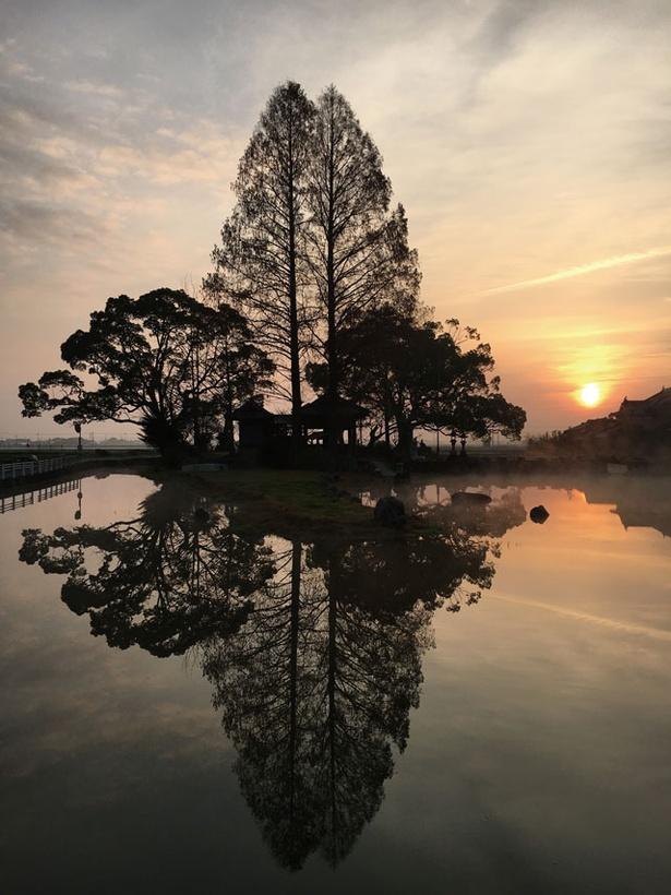 木々の影と夕日の茜色が池に映り込み、日中とは違う表情に / 縫ノ池