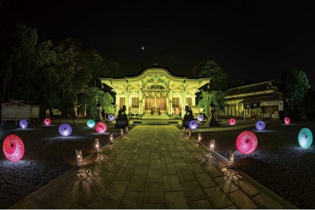 武雄神社の本殿のライトアップは無料で観賞できる / 武雄のあかりめぐり 2019