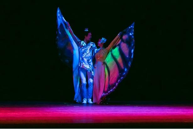 バレエ舞踊劇「蝶々と化す」 / 夏休みスペシャル アジア交流企画 中国芸術団