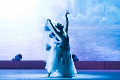舞踊「孔雀の舞」 / 夏休みスペシャル アジア交流企画 中国芸術団