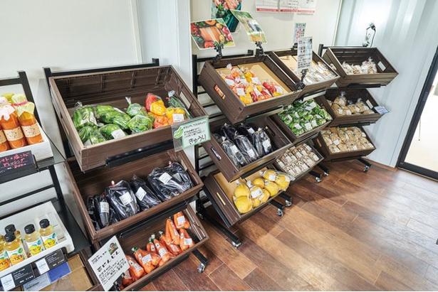 新鮮野菜のほか、オリジナル弁当も人気 / 南阿蘇ホリデーパーク