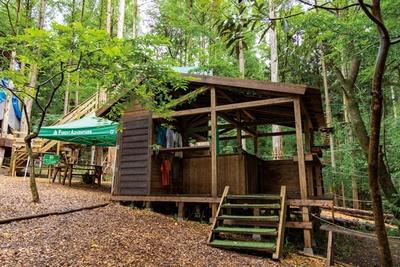 自然の森を利用したアウトドアパーク / フォレストアドベンチャー・別府