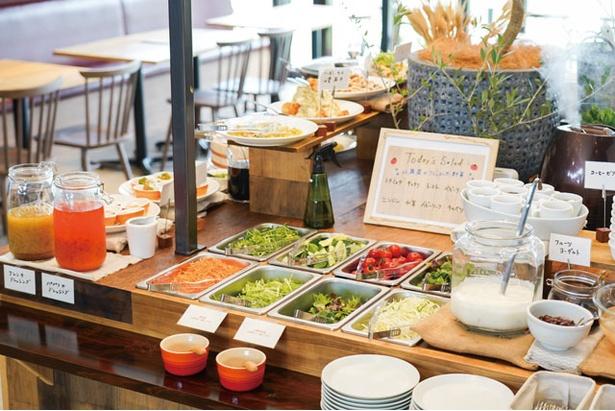 サラダ、スープ、デリは食べ放題 / 菊鹿ワイナリー