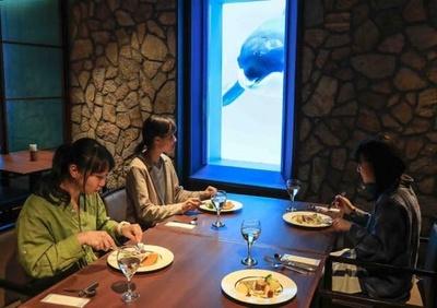 鴨川シーワールドでは特定日に水族館女子会を開催している