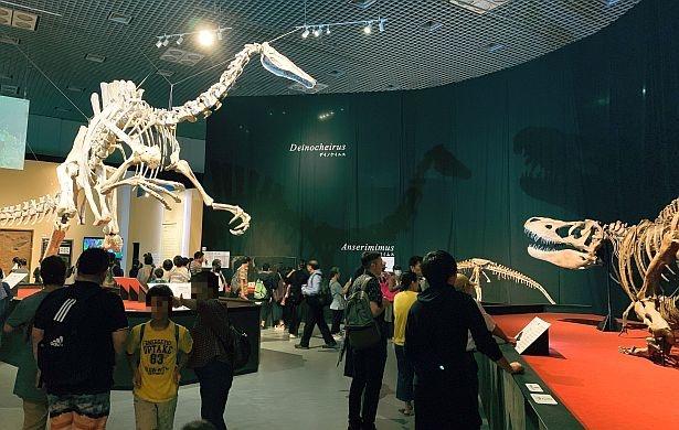 「国立科学博物館」(東京・上野公園)の特別展「恐竜博2019」の様子。親子連れも多く訪れている