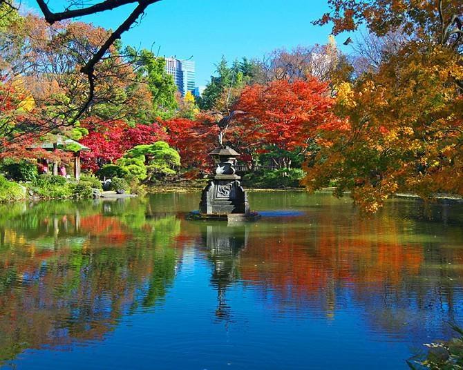 東京都内のおすすめ紅葉スポット9選!都心から少し足を伸ばそう