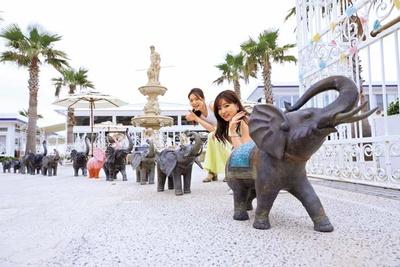 ゾウのオブジェがお迎え。リゾート気分を盛り上げてくれる/CRAFT CIRCUS