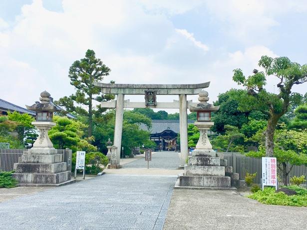 日本最古の八幡宮「誉田八幡宮」にお参りしよう
