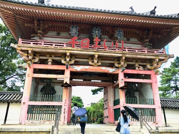 藤井寺市の名前の起源となったお寺