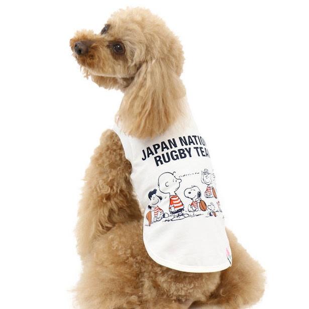 【写真を見る】チワワからラブラドールレトリバーまで、多くの犬種に対応できる10サイズ展開