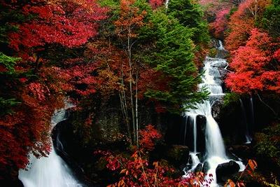 流れ落ちる名瀑と紅葉の情景が見事