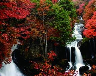 栃木のおすすめ紅葉スポット3選!迫力満点の滝や吊橋から紅葉散策