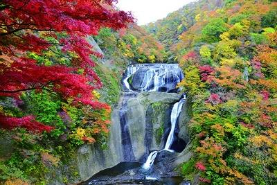 西行法師もたたえた日本屈指の名瀑